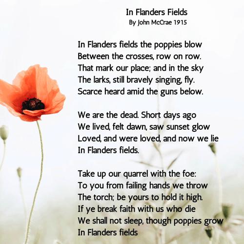 In Flanders Fields - Poppies