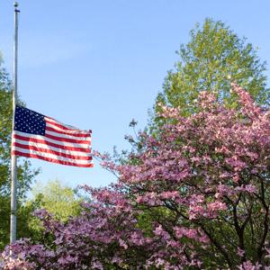 Memorial Day Posts